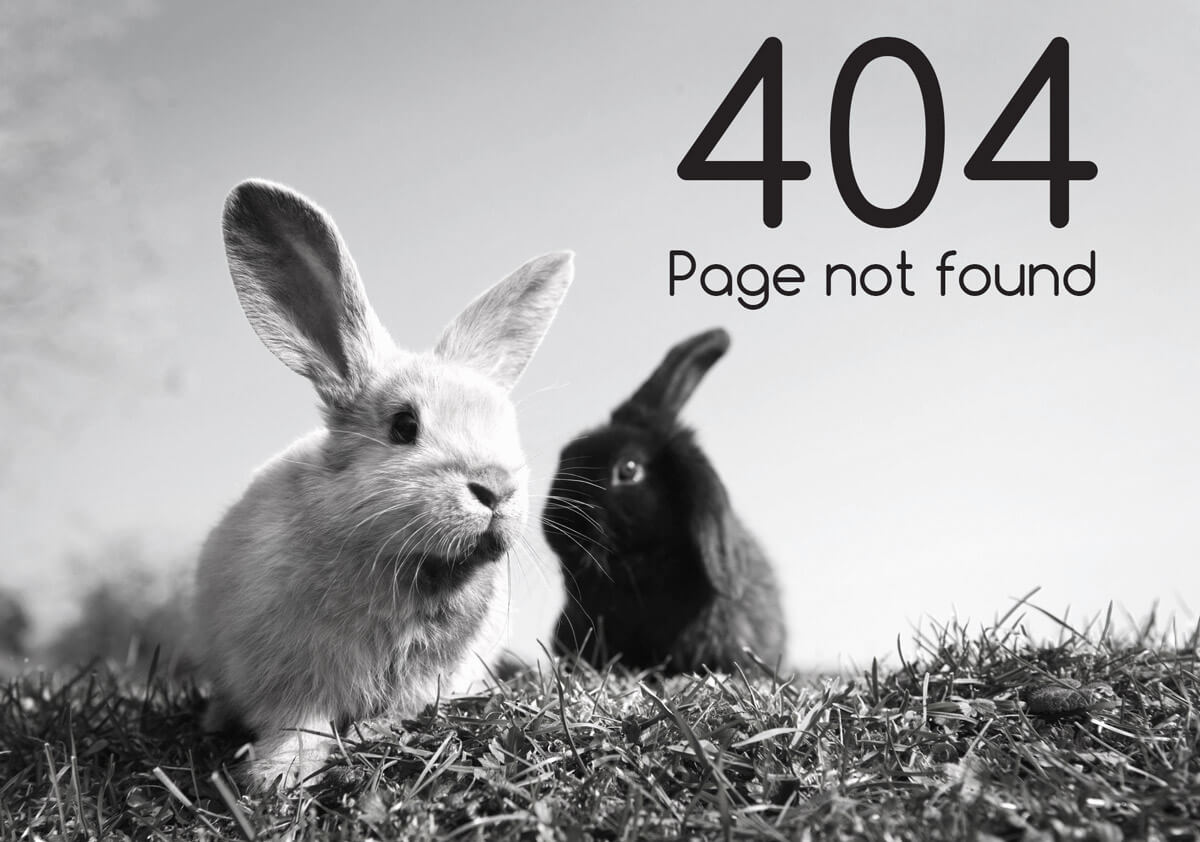 page could not be found