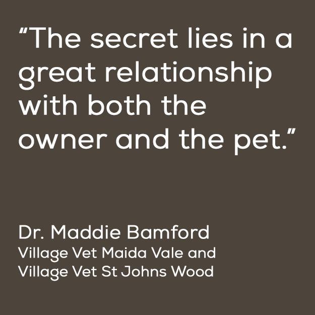 maddie-bamford