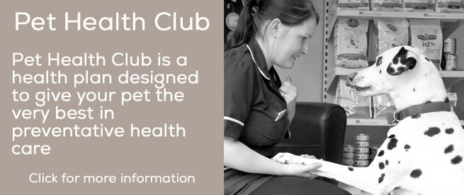 pet-health-club
