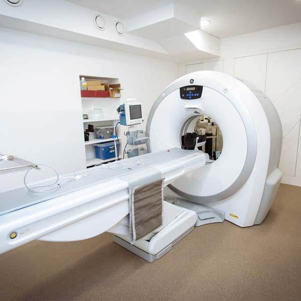 Ct scans in veterinary medicine village vet - Garden state veterinary services ...