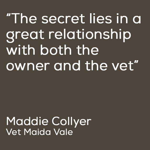 maddie-quote