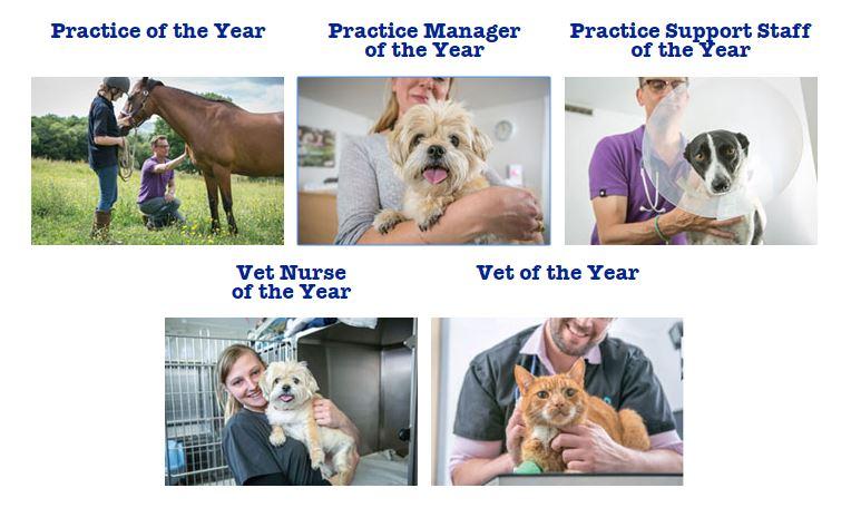 vet-awards